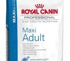 maxi_adult_16kg