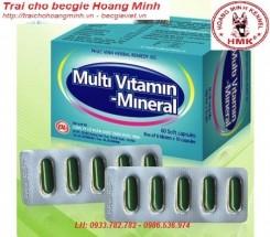 MULTIVITAMIN-453x397